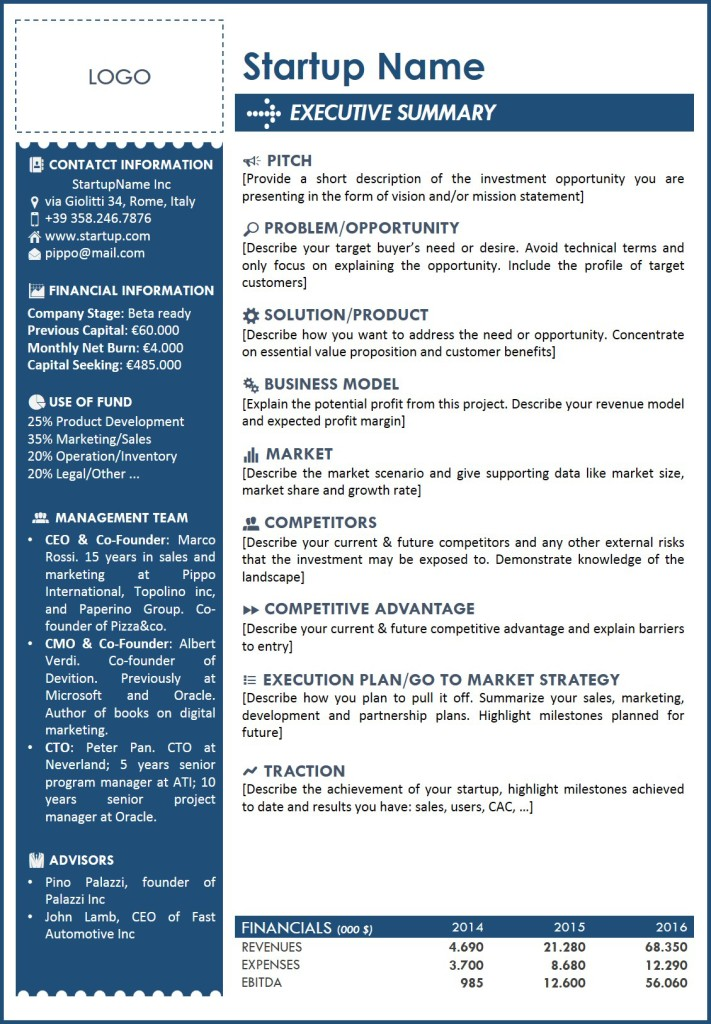 Delightful Executive Summary.png 711x1024 To Exec Summary Template